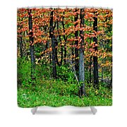 Blustery October Weather Shower Curtain