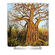 Baobab Tree Shower Curtain