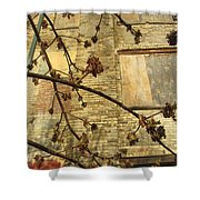 Boarded Windows And Branches Shower Curtain