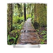 Boardwalk On The Rainforest Trail In Shower Curtain