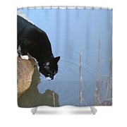 Boat Drinking From Pond Shower Curtain