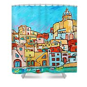 Boats In Front Of The Buildings Vii Shower Curtain