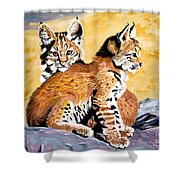Bob Kittens Shower Curtain by Phyllis Kaltenbach