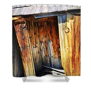 Bodie Decaying Privy Shower Curtain
