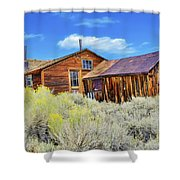 Bodie House And Sage Shower Curtain
