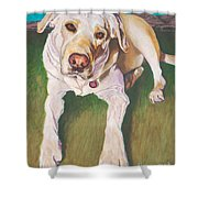 Bodie Living Large Shower Curtain