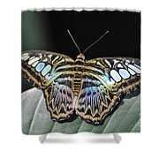 Body Art Shower Curtain