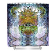 Bogomil Variation 15 Shower Curtain by Otto Rapp