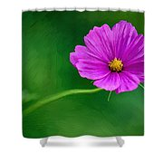 Bohemian Garden Magenta Shower Curtain