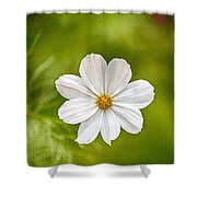 Bohemian Garden White Shower Curtain