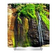 Boiler Bay Stream 17178 Shower Curtain