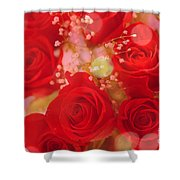 Bokeh Roses Shower Curtain by Cheryl Young