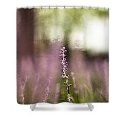 Bokeh With Purple Wildflower Shower Curtain