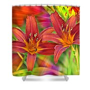Bold And Beautiful Daylilies Shower Curtain