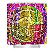 Bold And Colorful Phone Case Artwork Designs By Carole Spandau Cbs Art Exclusives 108 Shower Curtain