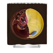 Bold Orb Shower Curtain