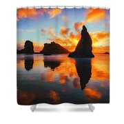 Boldly Bandon Shower Curtain by Darren  White