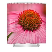 Boldly Summer Shower Curtain