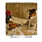 Bon Appetit  Shower Curtain