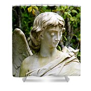 Bonaventure Angels Series - Clipped Wing Shower Curtain