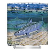 Bonefish Flats In002 Shower Curtain