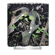 Bones On The Forest Floor Shower Curtain