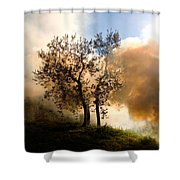 Bonfire And Olive Tree Shower Curtain
