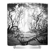 Bonita Beach Walkway Shower Curtain