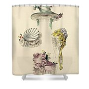 Bonnets For An Occasion, Fashion Plate Shower Curtain