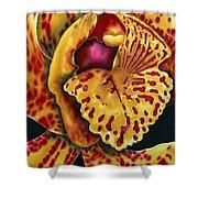 Bonnie Orchid II Shower Curtain by Daniel Jean-Baptiste