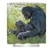Bonobo Mother And Baby Shower Curtain