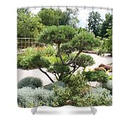 Bonsai In The Park Shower Curtain