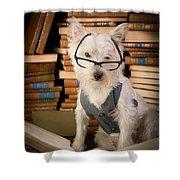 Bookworm Dog Shower Curtain