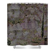 Blooming  Almonds At Night Shower Curtain