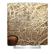 Boots On Wood Shower Curtain