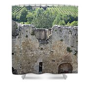 Bordeaux Castle Ruins With Vineyard Shower Curtain