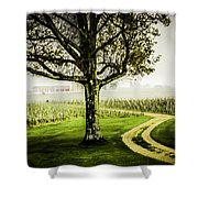 Bordeaux Vineyard Shower Curtain