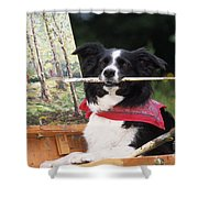 Border Collie At Painting Easel Shower Curtain