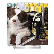 Border Collie Puppy With Sewing Machine Shower Curtain