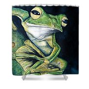 Boreal Flyer Tree Frog Shower Curtain