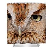 Boreal Owl Eyes  Shower Curtain