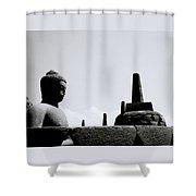 The Meditation Of The Buddha Shower Curtain