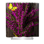 Boronia With Yellow Butterfly Shower Curtain