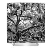 Bosque Bello Oak Shower Curtain