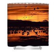 Bosque Del Apache Sunrise 1 Shower Curtain