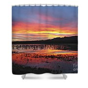 Bosque Sunset I Shower Curtain