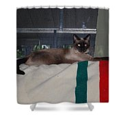 Boss Cat Shower Curtain