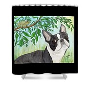 Boston Terrier Dog Tree Frog Cathy Peek Art Shower Curtain