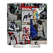 Boston Terrier Watercolor Collage Shower Curtain