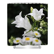 Botanical Beauty In White Shower Curtain